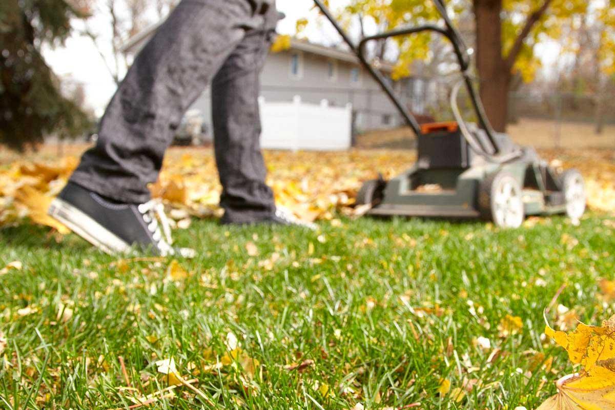 Koszenie trawy na jesień